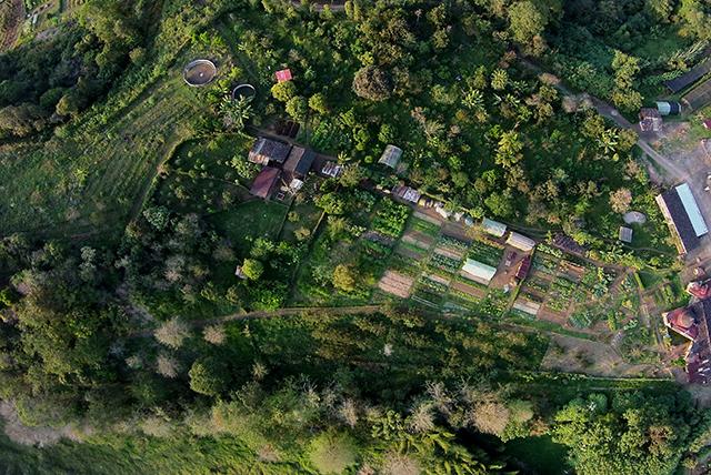 Agroecologia-huerto-biointensivo y bosque comestible